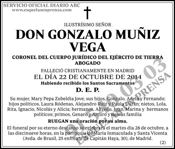 Gonzalo Muñiz Vega